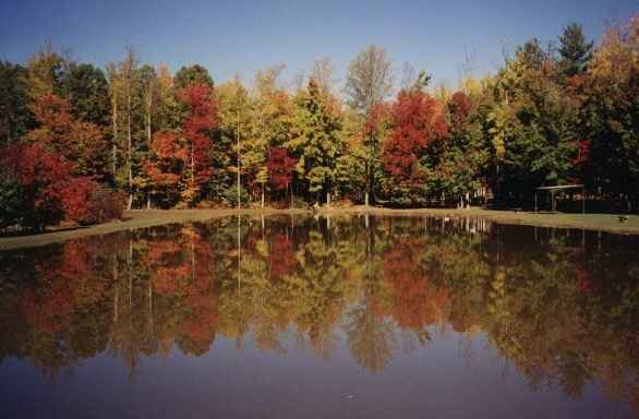 Wildwood Campground Lake